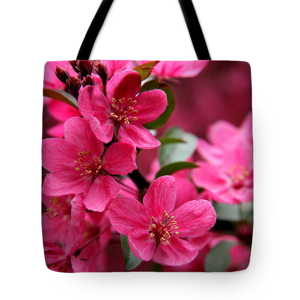 Plum Blossoms Tote Bag featuring the photograph Pink Plum Blossoms by Christiane Schulze Art And Photography