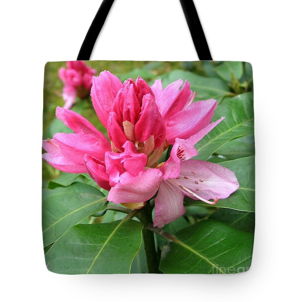 Rhododendron Tote Bag featuring the photograph Pink Rhododendron Bud by Christiane Schulze Art And Photography