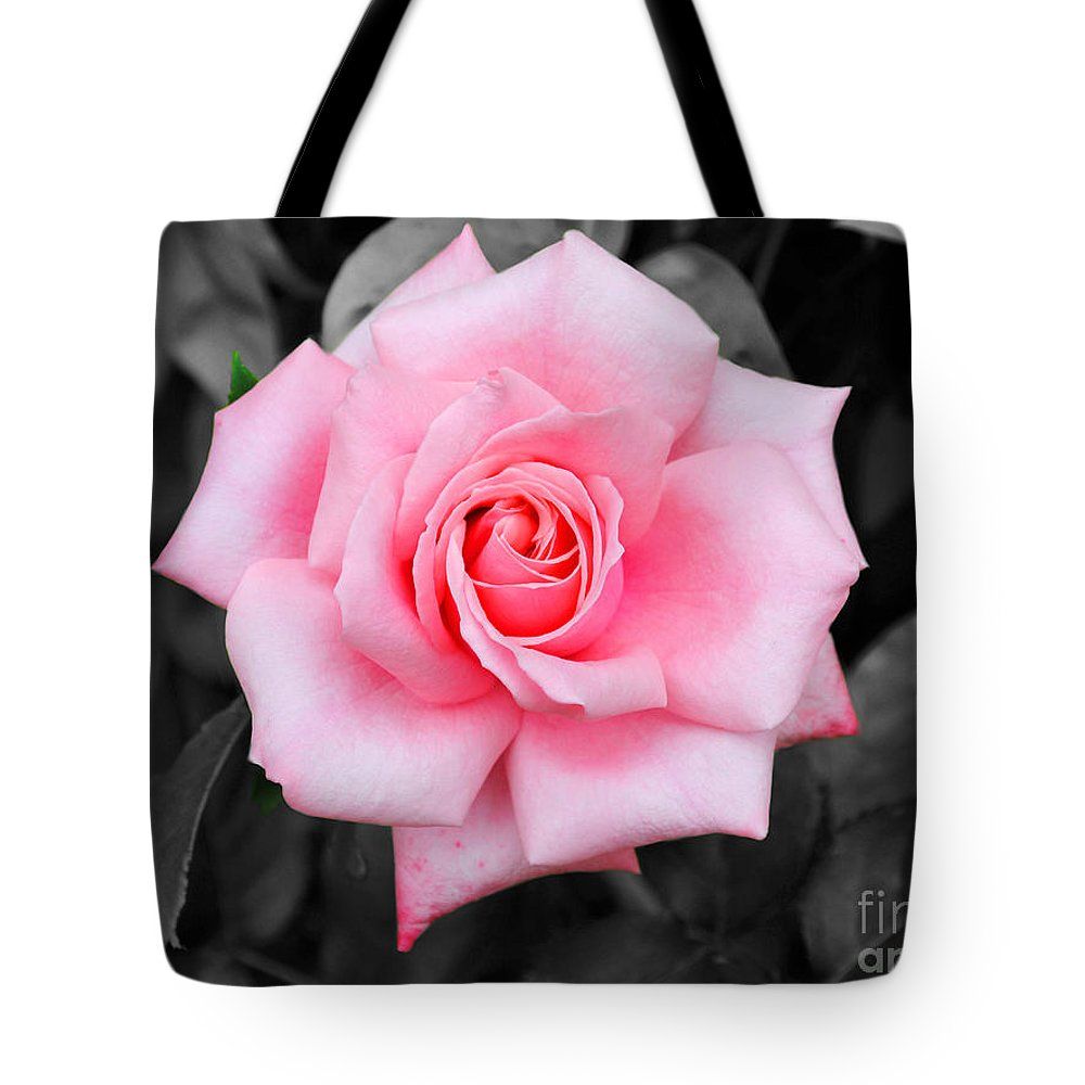 Rose Tote Bag featuring the photograph Pink Rose by Jai Johnson