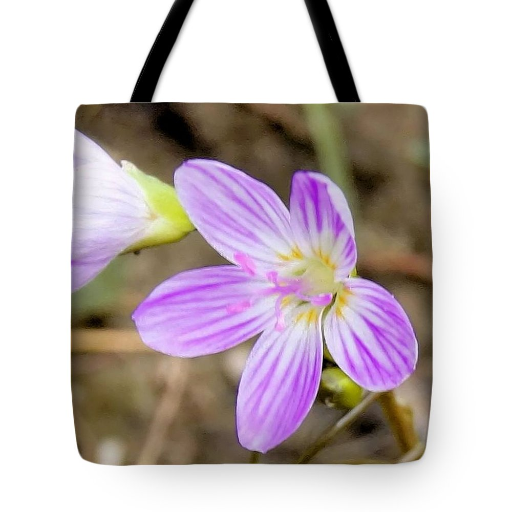 Spring Beauty Tote Bag featuring the photograph Pink Spring Beauty by Eric Noa