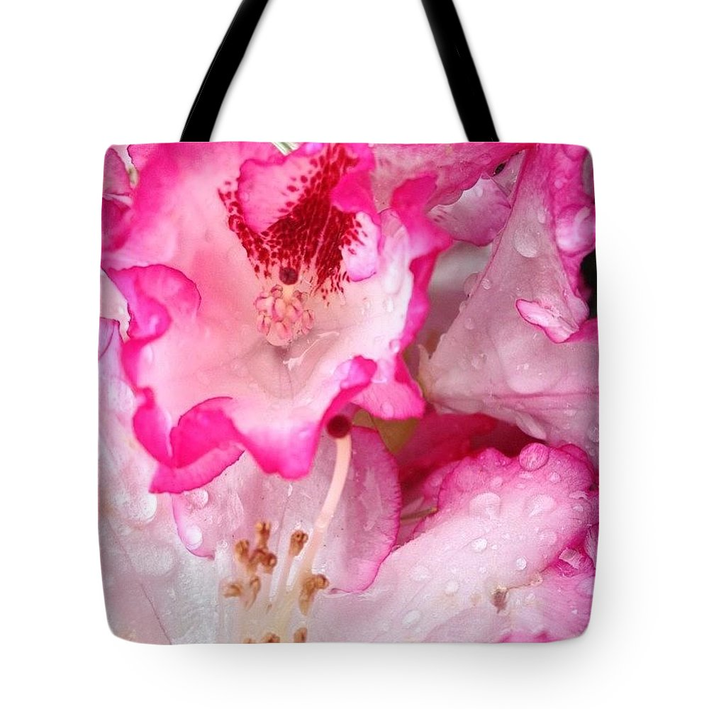 Pink Tipped Rhododendrons Tote Bag featuring the photograph Pink Tipped Rhododendrons by Anna Porter
