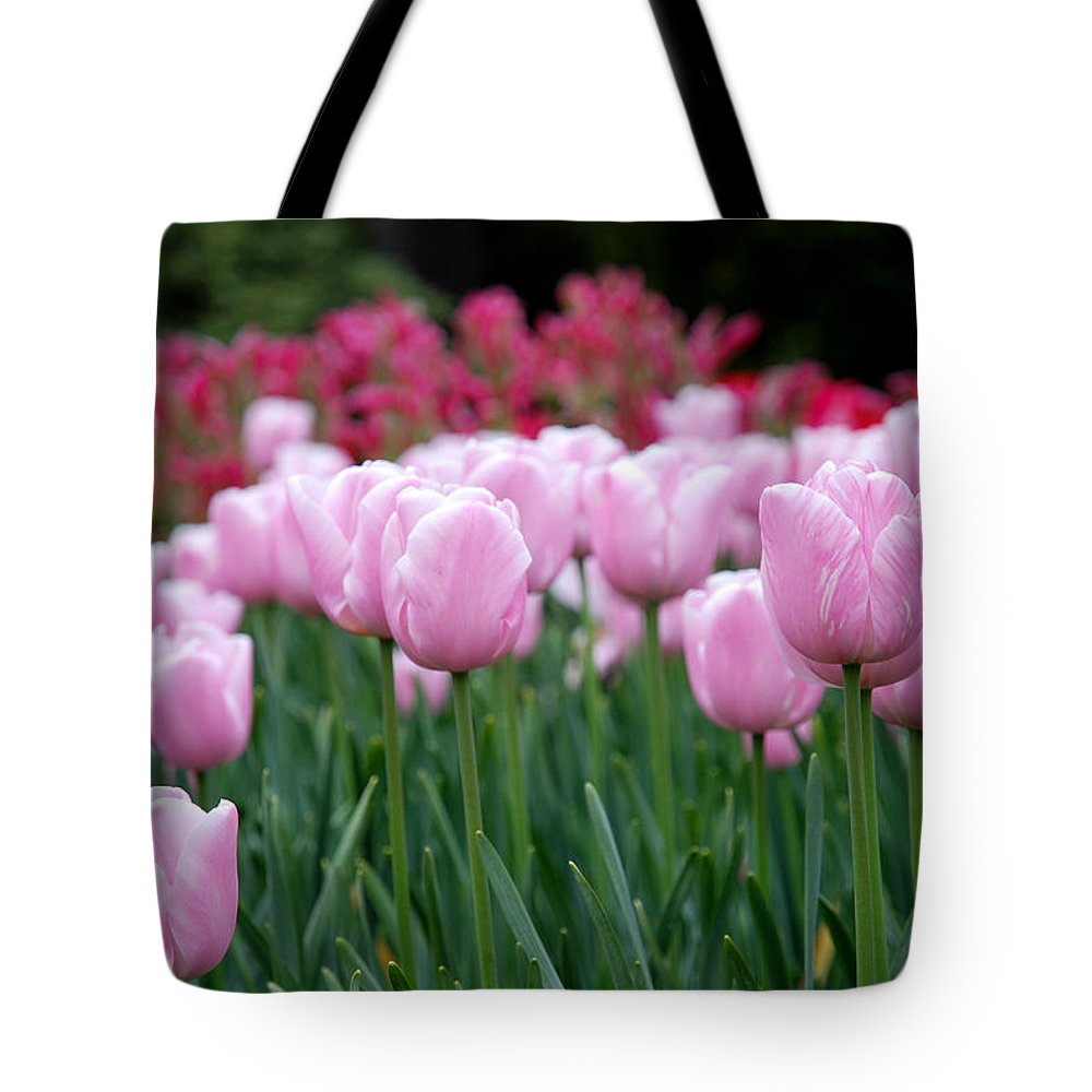 Tulip Tote Bag featuring the photograph Pink Tulip Garden by Jennifer Ancker