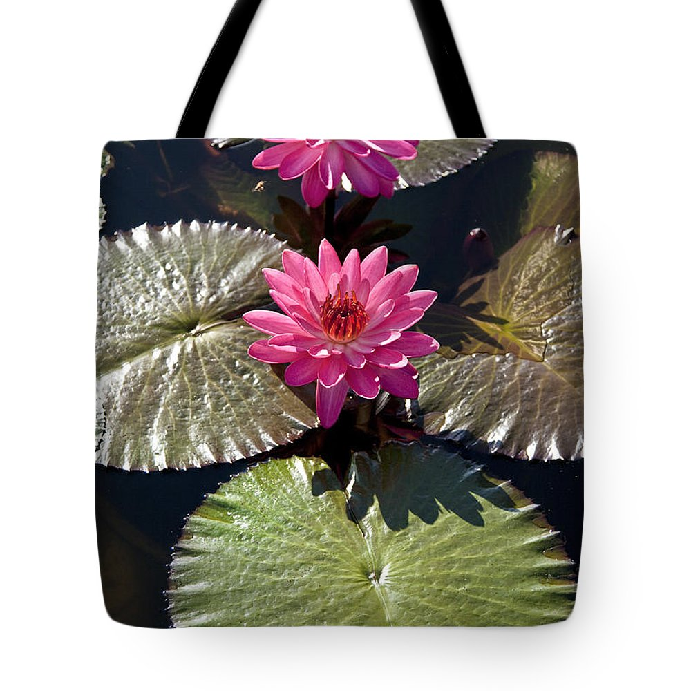 Water Llilies Tote Bag featuring the photograph Pink Water Lily IIi by Heiko Koehrer-Wagner