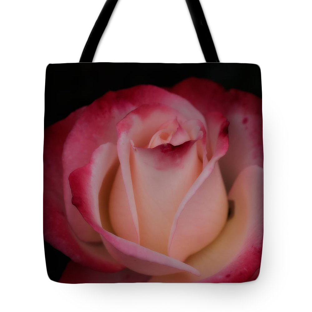 Pink White Rose Tote Bag featuring the photograph Pink White Rose by Brothers Beerens