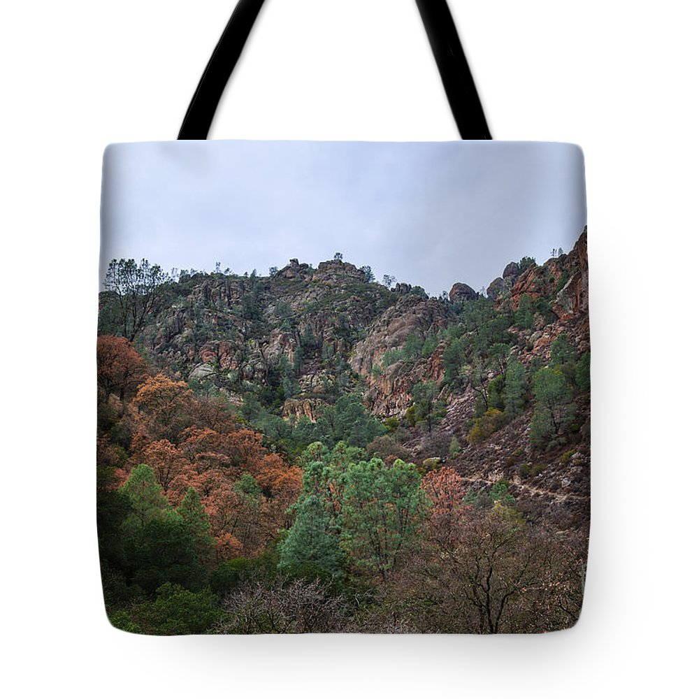 Pinnacles National Park Tote Bag featuring the photograph Pinnacles National Park by Yefim Bam