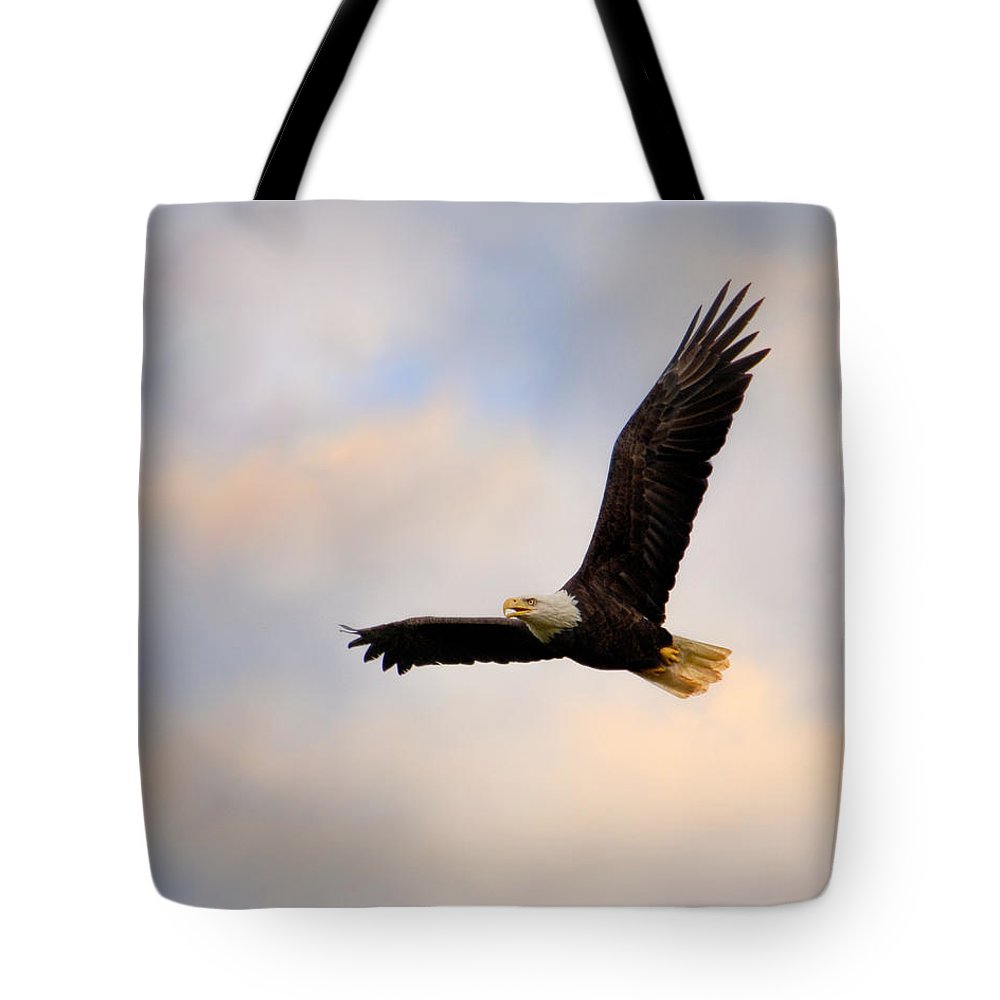 Usa Tote Bag featuring the photograph Pinson Mounds Eagle by Jai Johnson