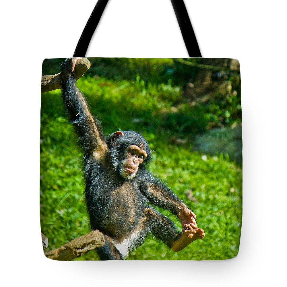 Animals Andearth Tote Bag featuring the photograph Playful Chimp by Jonny D