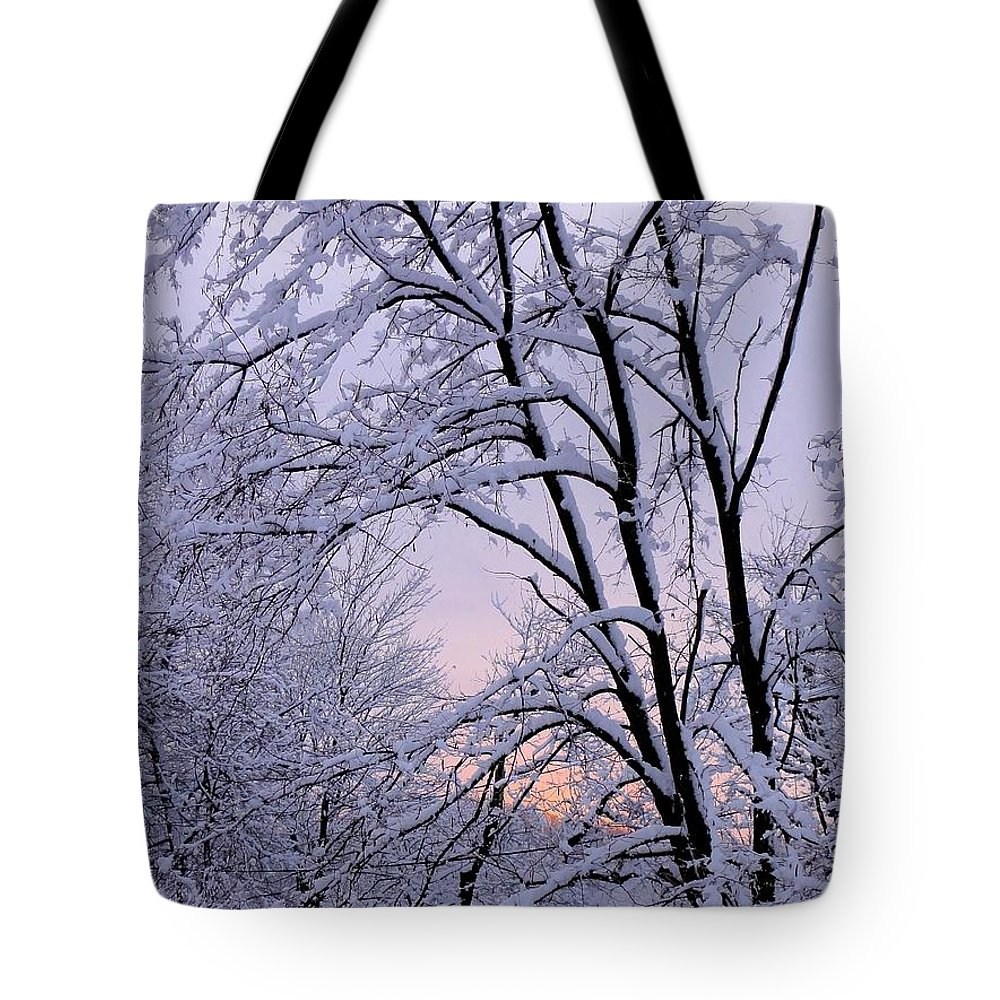 Bucks County Playhouse Tote Bag featuring the photograph Playhouse Through Snow by Christopher Plummer