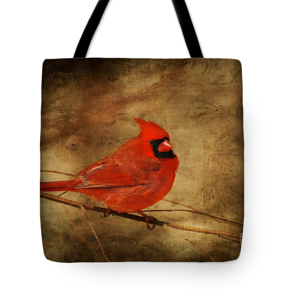 Bird Tote Bag featuring the photograph Please Feed The Birds by Lois Bryan