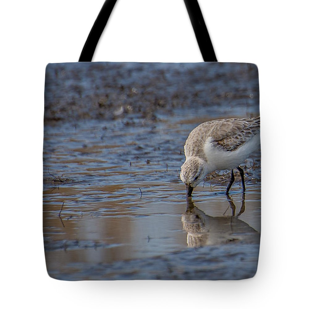 Plover Tote Bag featuring the photograph Plover by Stacy Abbott