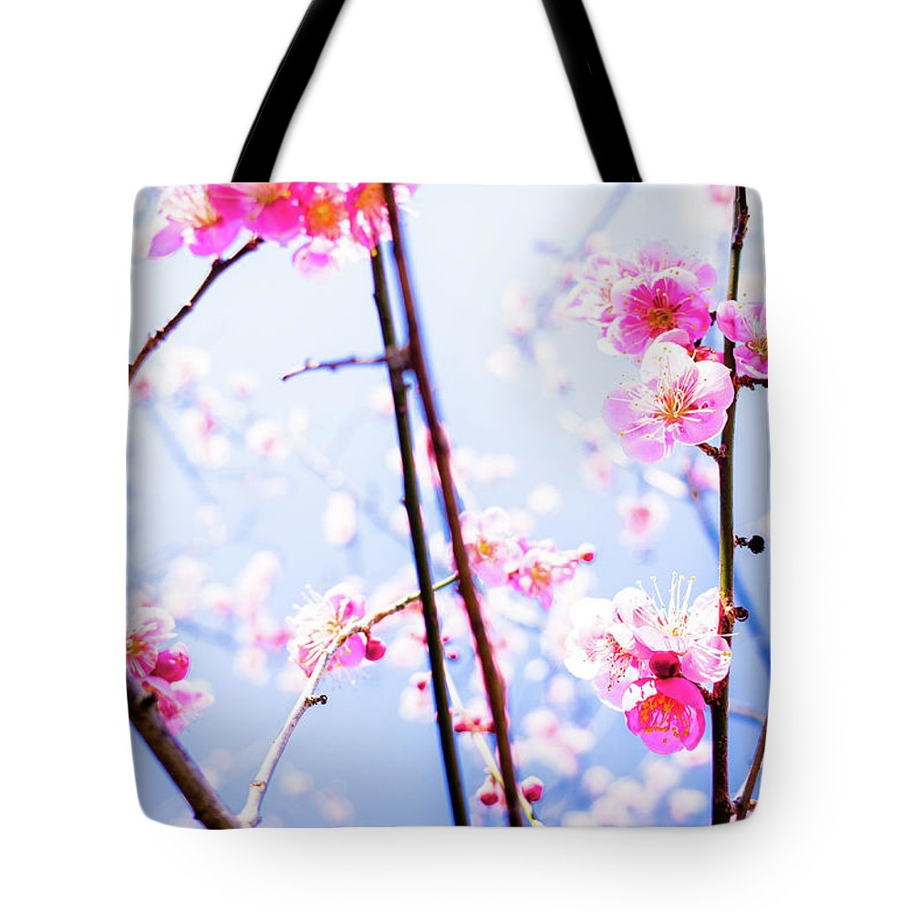 Plum Tote Bag featuring the photograph Plum Blossoms In Bloom by Marser