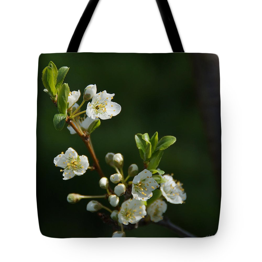 Plum Tote Bag featuring the photograph Plum Blossoms by Mick Anderson