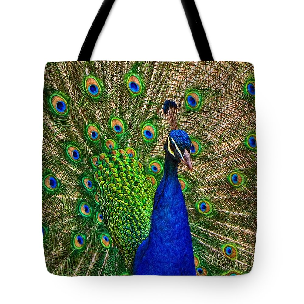 Bird Tote Bag featuring the photograph Plumage by Christopher Cook