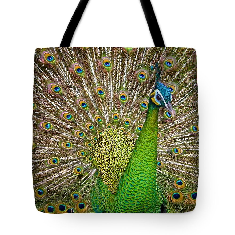 Peacock Tote Bag featuring the photograph Plumage by Judy Kay