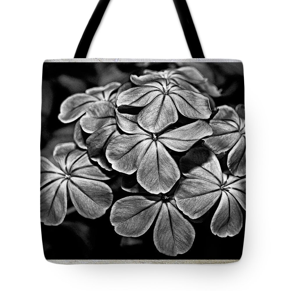 Black Tote Bag featuring the photograph Plumbago In Gray by Judy Vincent