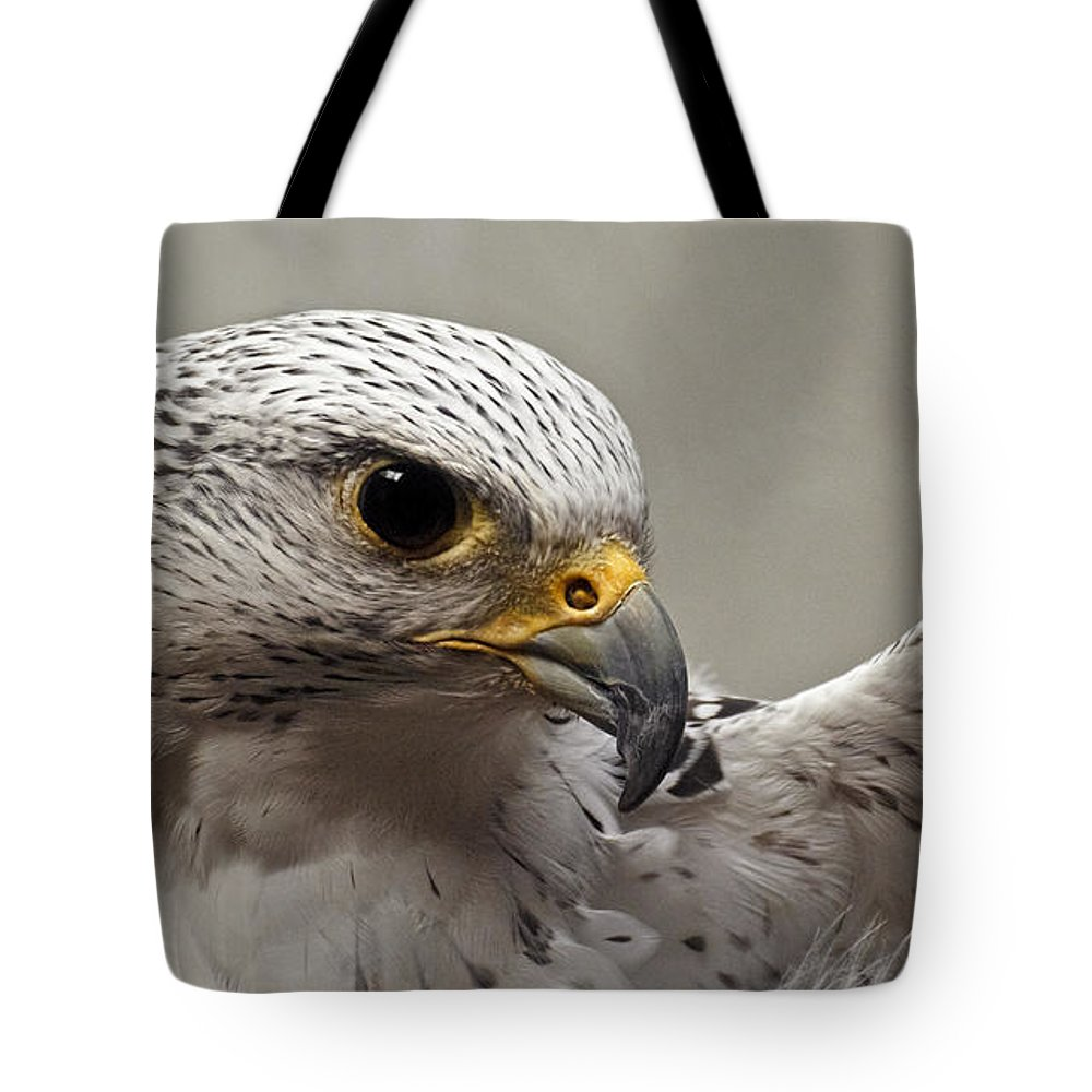 Point Defiance Gryfalcon Tote Bag featuring the photograph Point Defiance Gryfalcon by Wes and Dotty Weber