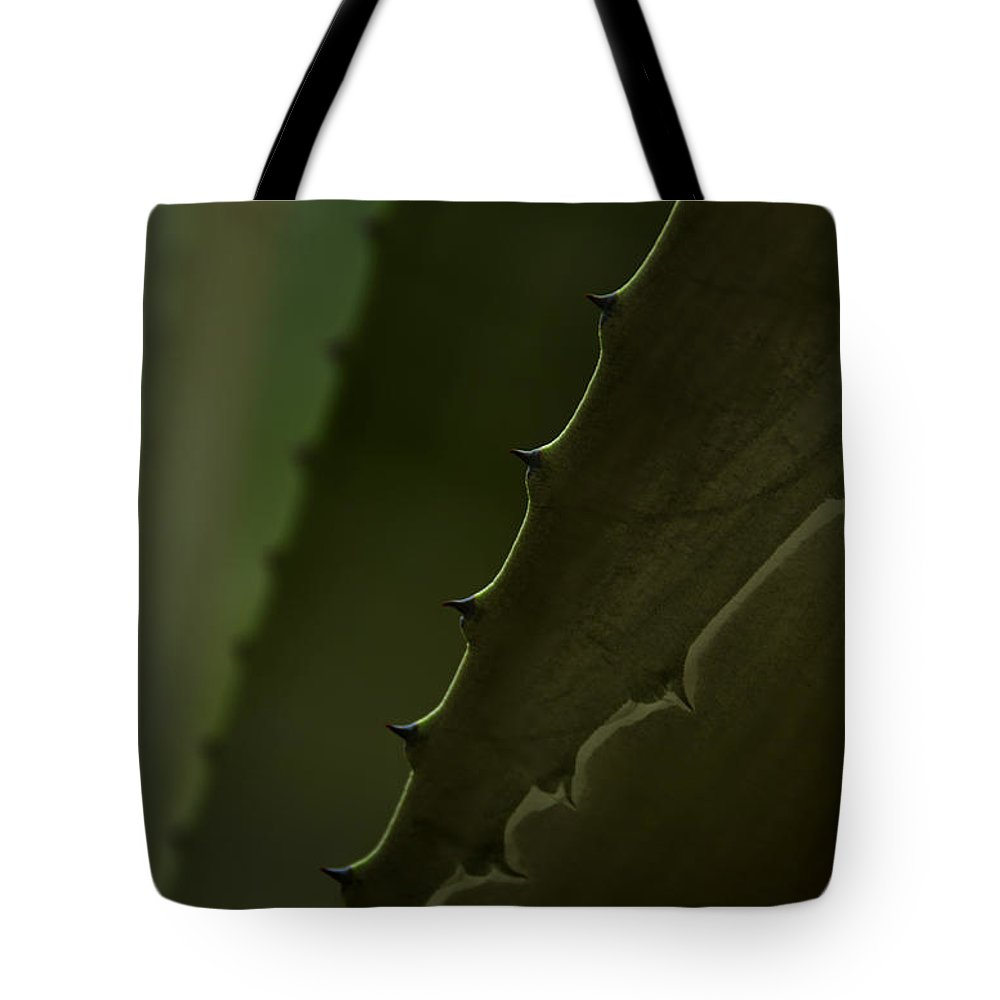 Plant Tote Bag featuring the photograph Pointed by Margie Hurwich