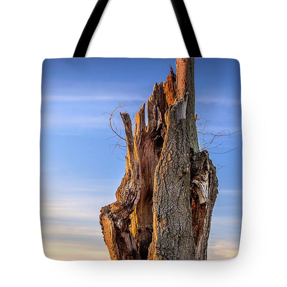 2d Tote Bag featuring the photograph Pointing To The Heavens by Brian Wallace
