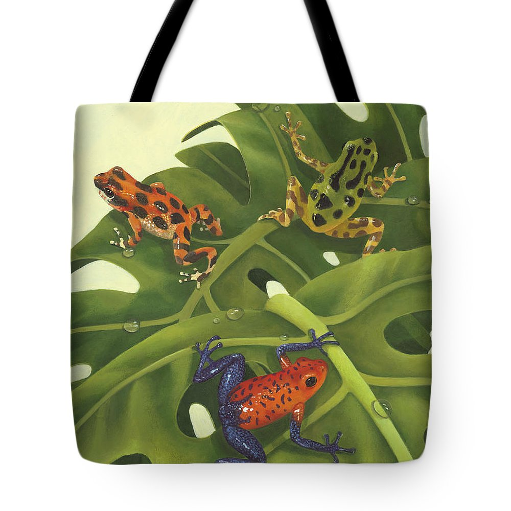 Green Tree Frogs Lifestyle Products
