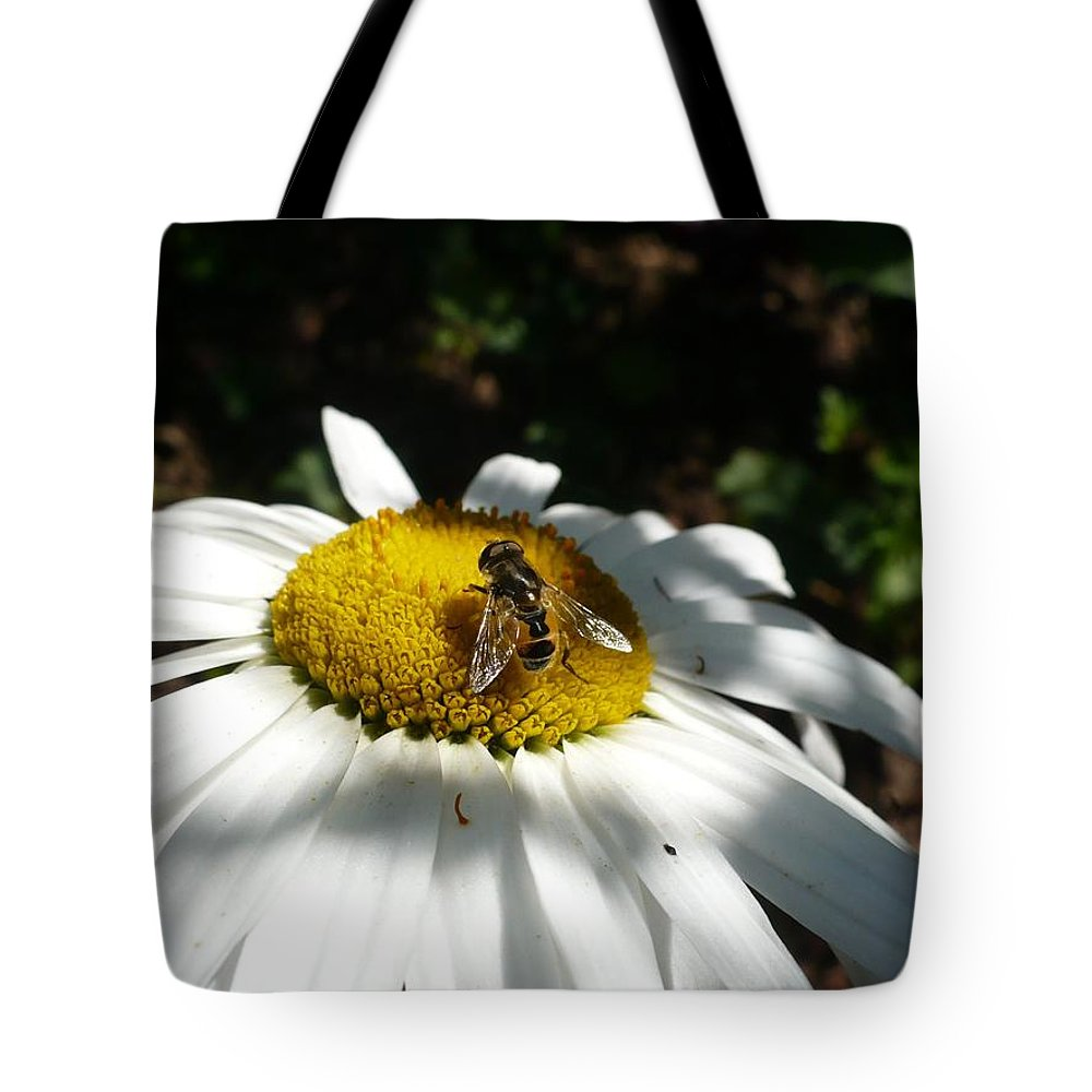 Daisy Tote Bag featuring the photograph Pollen Collection Daisy by Nicki Bennett