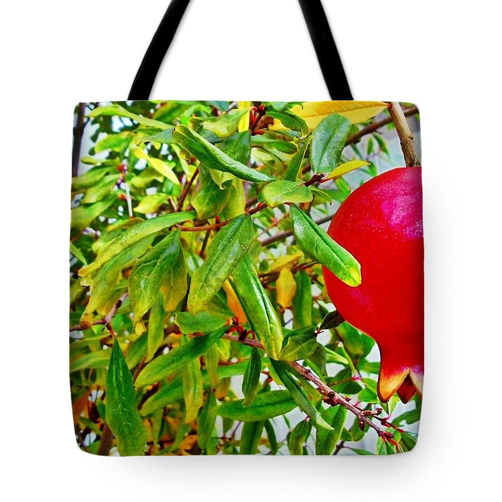 Pomegranate Tote Bag featuring the photograph Pomegranate by Jennifer Boisvert