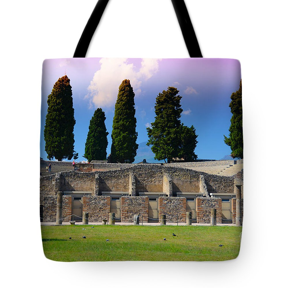 Pompeii Tote Bag featuring the photograph Pompeii Walls And Trees by Phill Petrovic