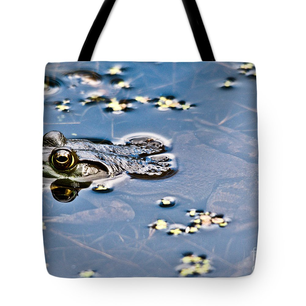 Frog Tote Bag featuring the photograph Pond Dweller by Cheryl Baxter