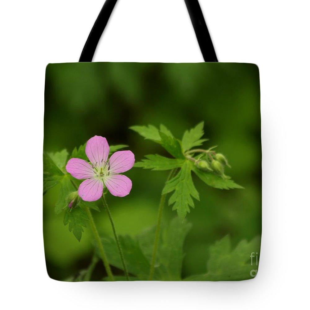 Pink Tote Bag featuring the photograph Pop Of Pink by Kenny Glotfelty