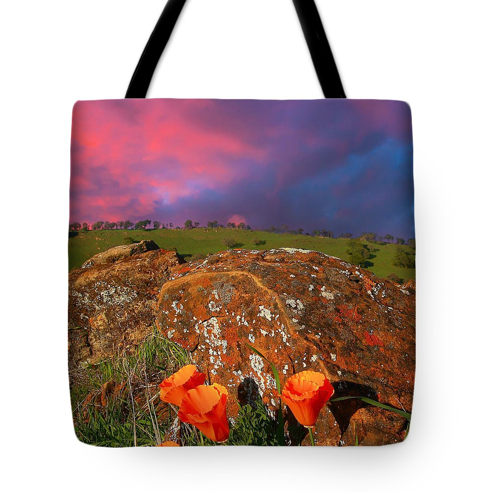 Landscape Tote Bag featuring the photograph Poppies And Clouds by Marc Crumpler