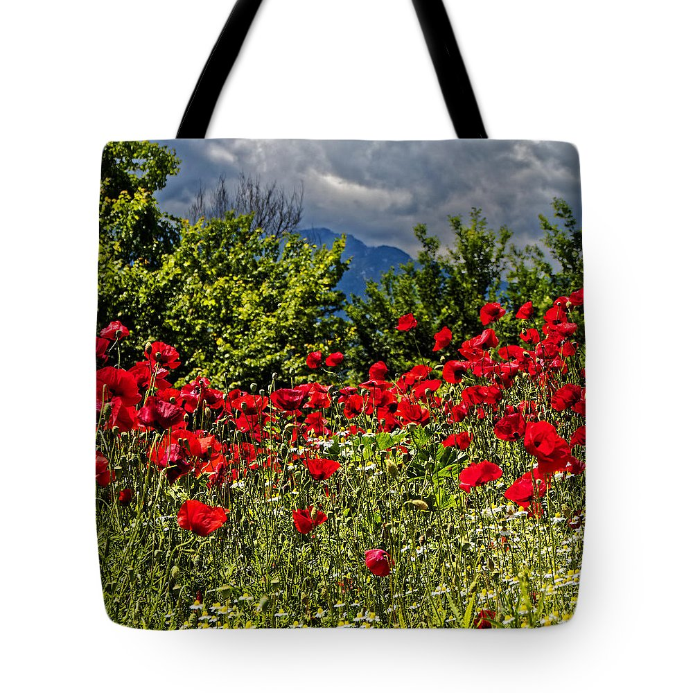 Poppy Tote Bag featuring the photograph Poppies In Remembrance by Rachel Down