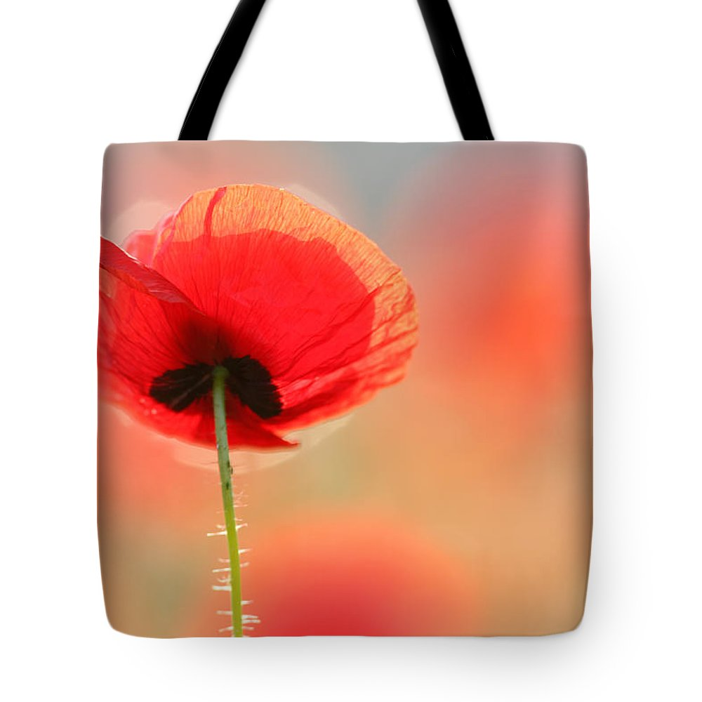Bokeh Tote Bag featuring the photograph Poppy Dream by Roeselien Raimond