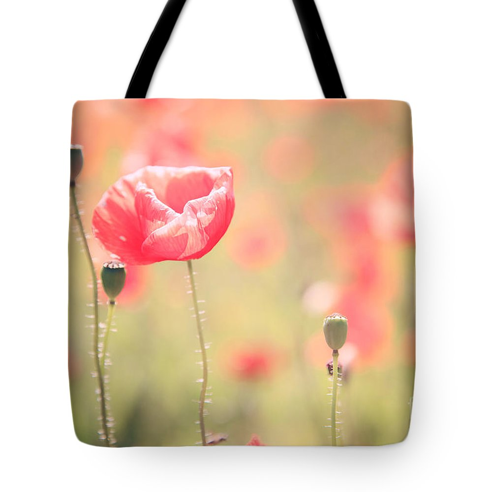 Vintage Tote Bag featuring the photograph Poppy Field In Tuscany - Italy by Matteo Colombo