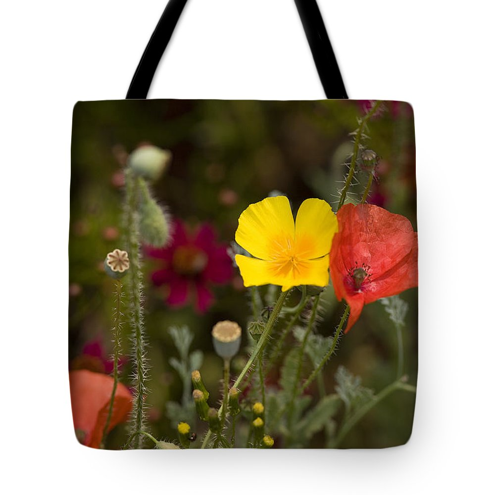 Poppies Tote Bag featuring the photograph Poppy Love by Mark Greenberg