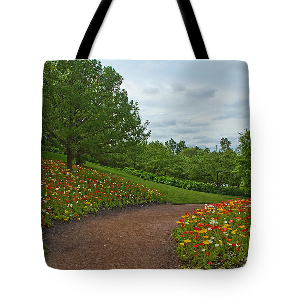 Poppies Tote Bag featuring the photograph Poppy Path by Lindley Johnson