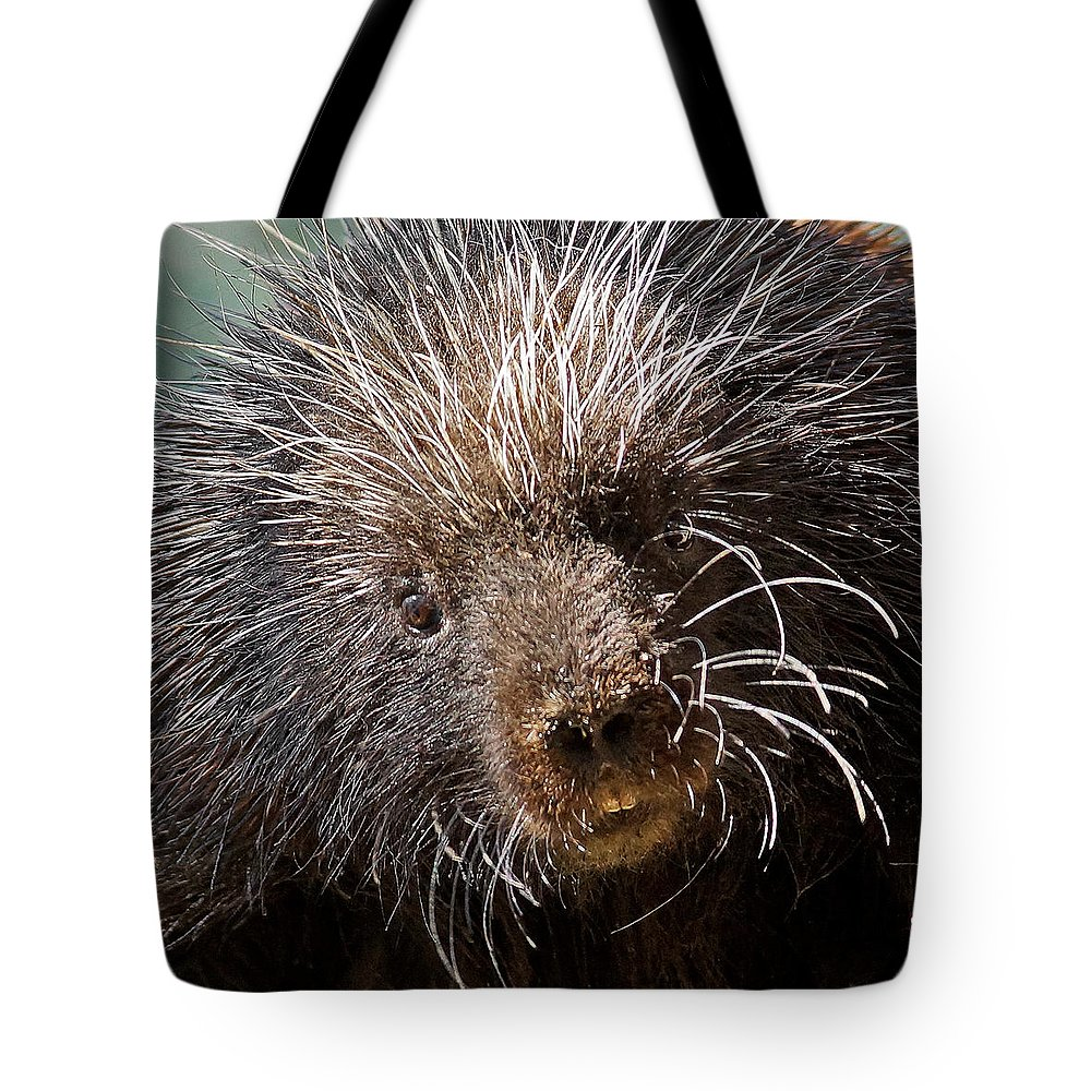 Porcupine Tote Bag featuring the photograph Porcupine by Ernie Echols