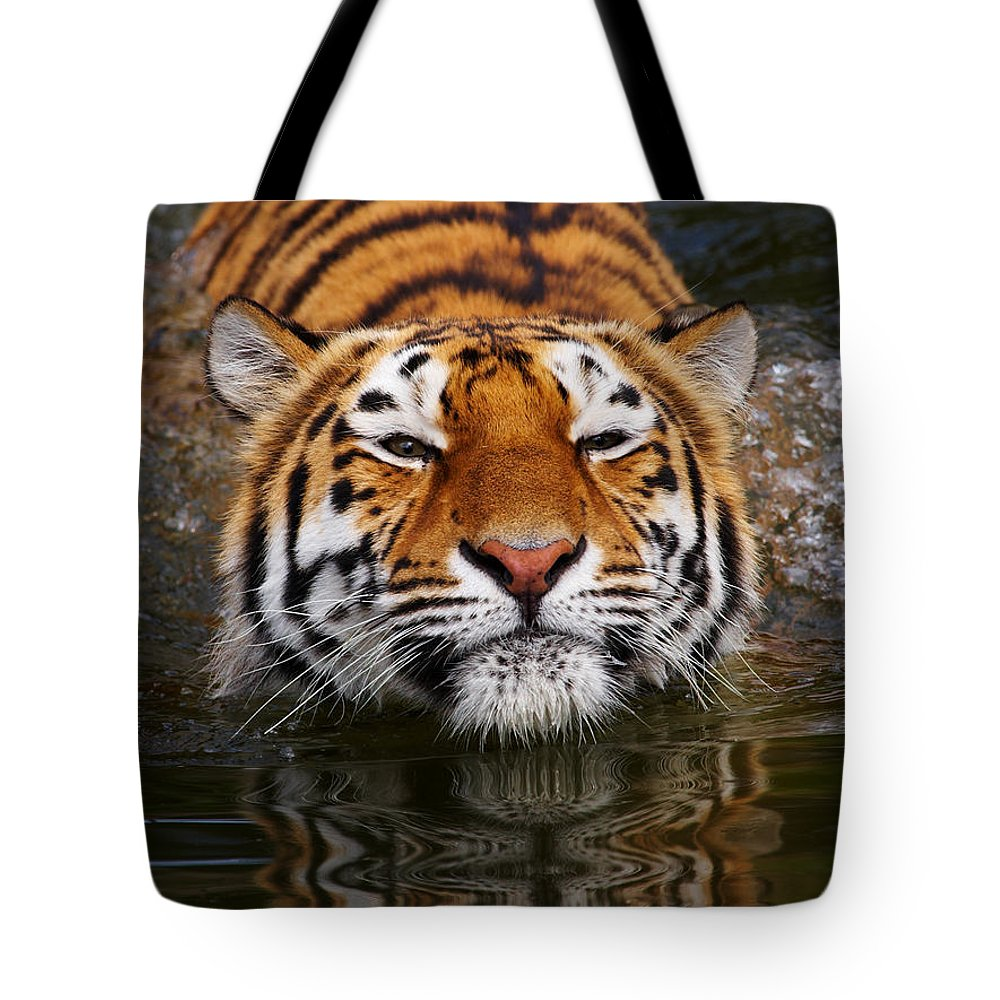 Pool Tote Bag featuring the photograph Portrait Of A Bathing Siberian Tiger by Nick Biemans