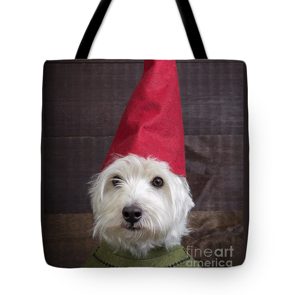 Garden Tote Bag featuring the photograph Portrait Of A Garden Gnome by Edward Fielding