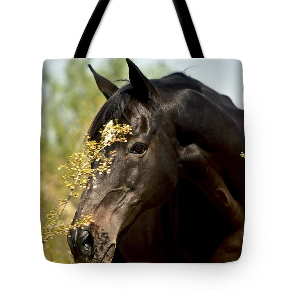 Horse Tote Bag featuring the photograph Portrait Of A Thoroughbred by Kathy McClure