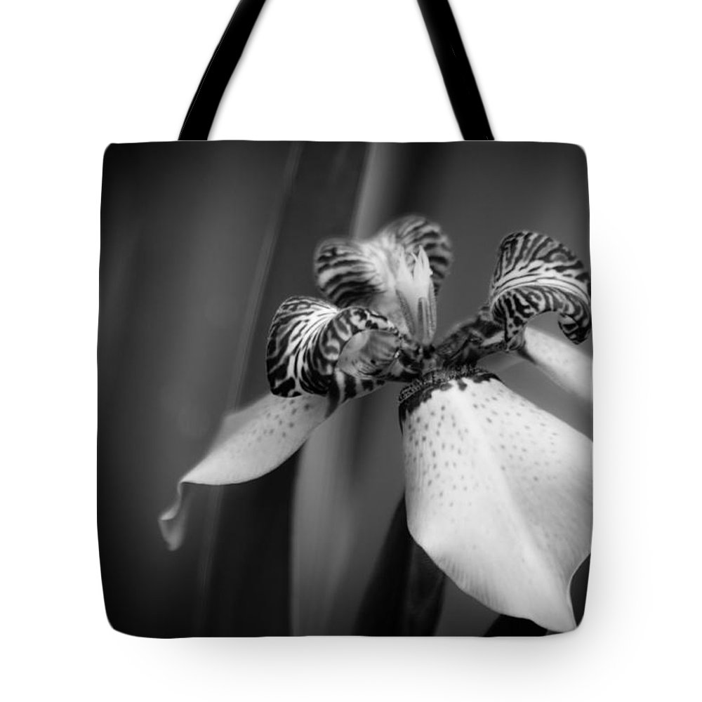 Iris Tote Bag featuring the photograph Portrait Of An Iris by Lauri Novak