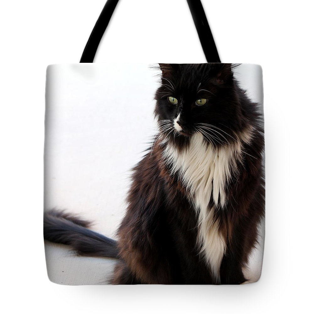 B And W Tote Bag featuring the photograph Portrait Of Waffles by Jennifer E Doll