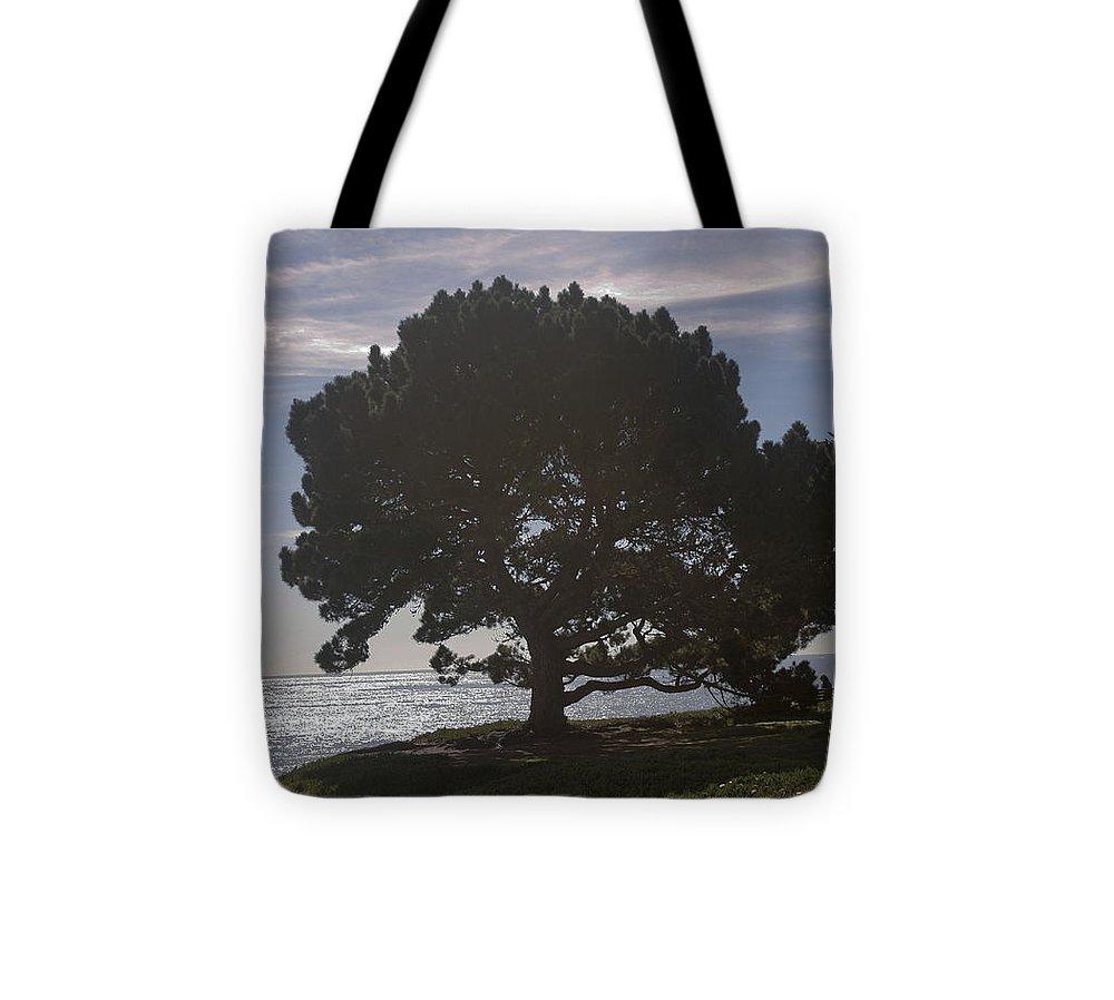 Landscape Tote Bag featuring the photograph pr 216- Black Oak by Chris Berry