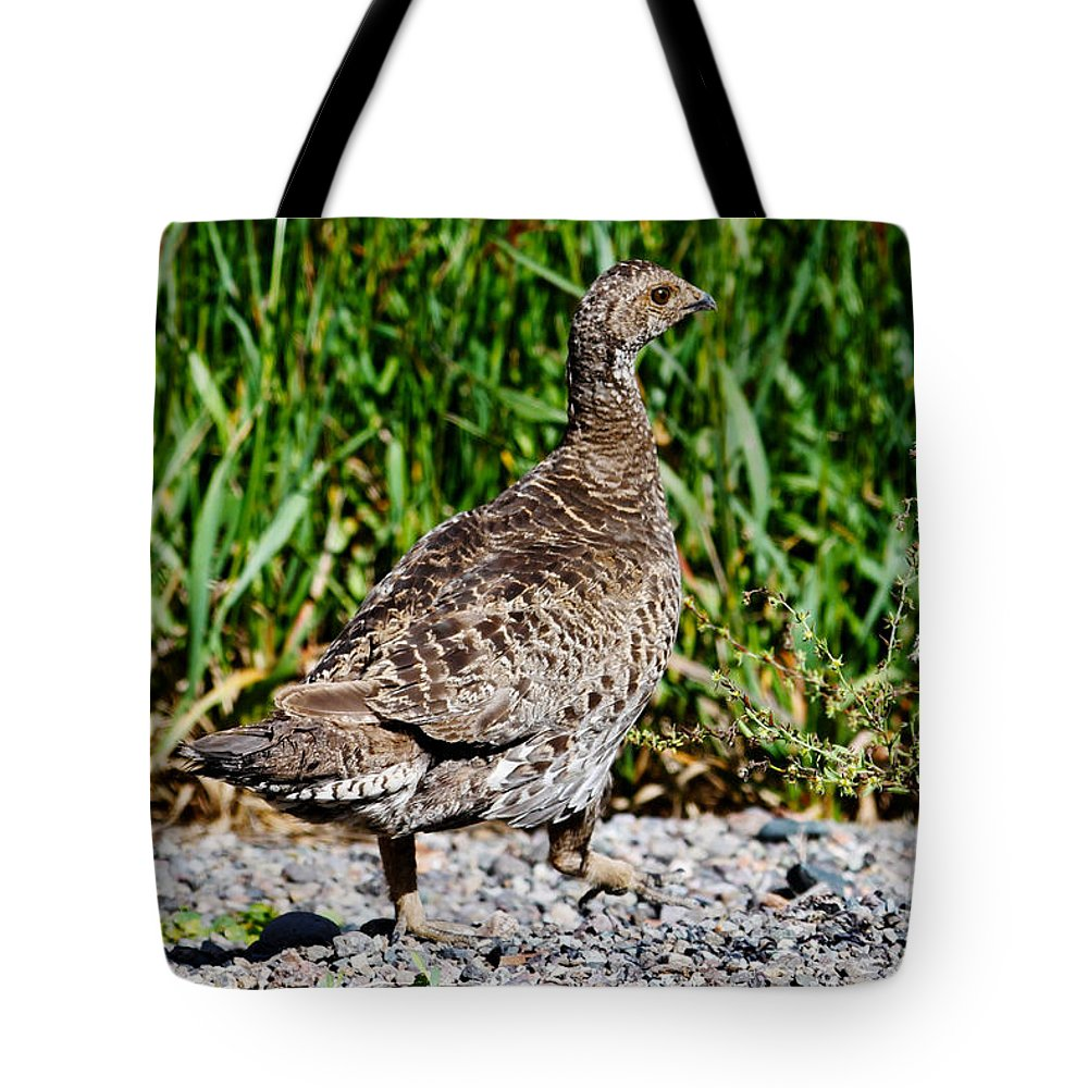 Summer Tote Bag featuring the photograph Prairie Chicken Run by Janice Pariza