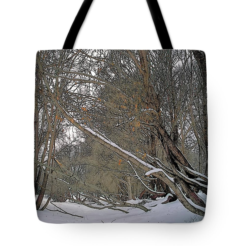 Beautiful Tote Bag featuring the painting Prairie Winter 2 by Terry Reynoldson