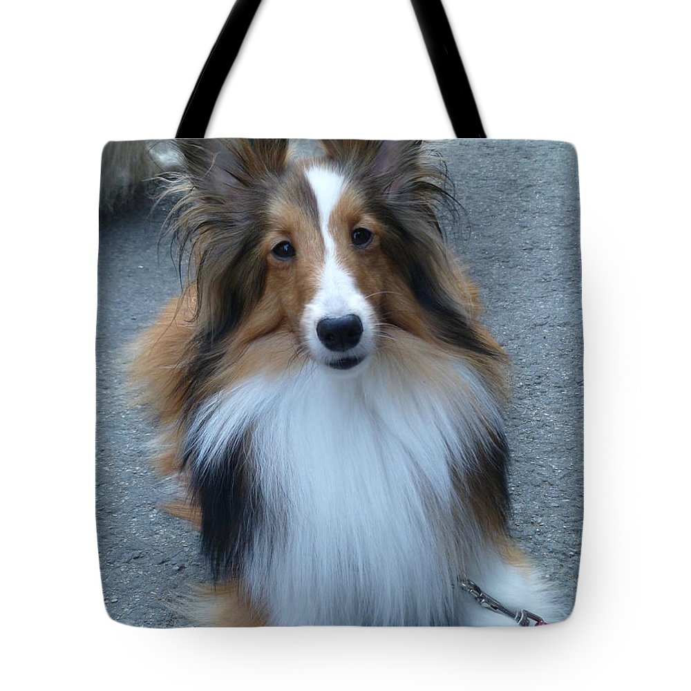 Pet Photography Tote Bag featuring the photograph Precious by Lingfai Leung