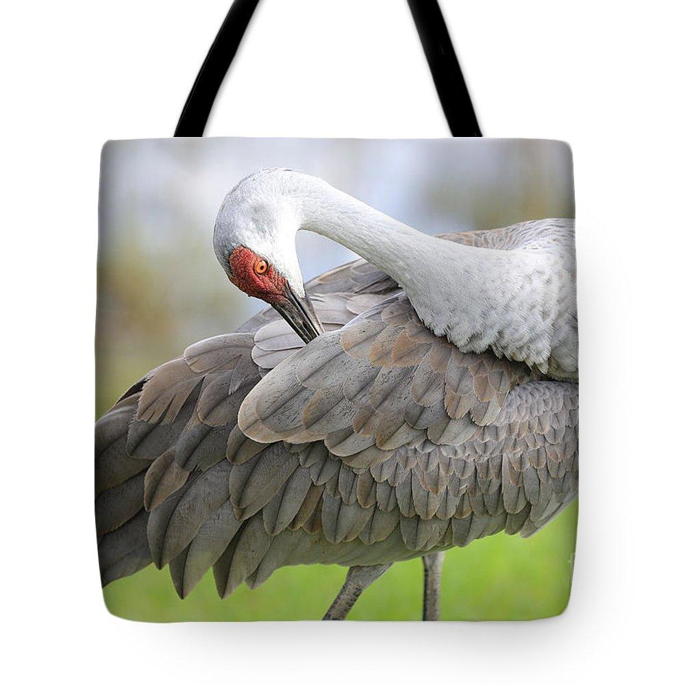 Sandhill Tote Bag featuring the photograph Preener Sandhill Crane by Carol Groenen