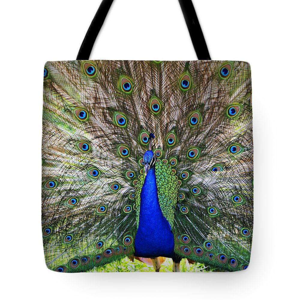 Peacock Tote Bag featuring the photograph Pretty As A Peacock by Tony Colvin
