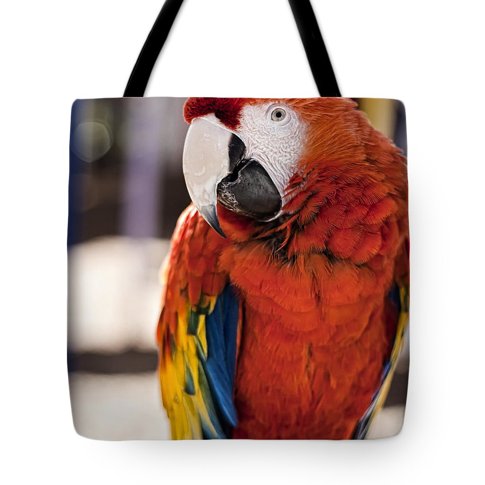 Macaw Tote Bag featuring the photograph Pretty Bird 2 by Scott Wood