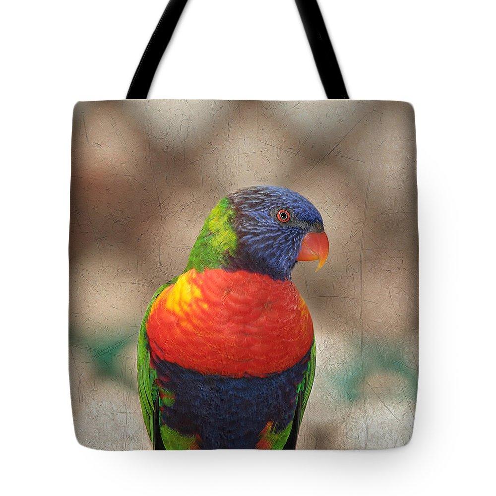 Lorikeet Tote Bag featuring the photograph Pretty Bird - Rainbow Lorikeet by Kim Hojnacki