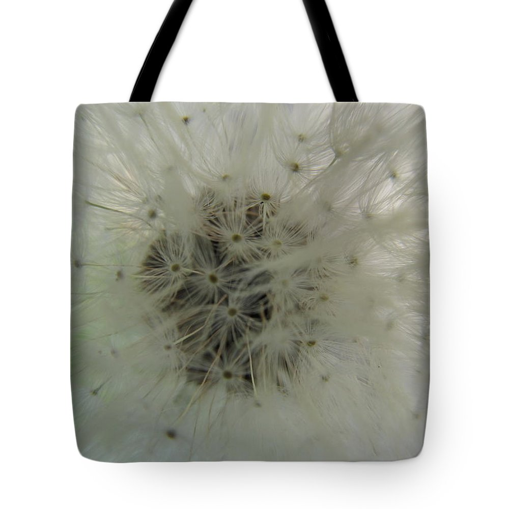 Dandelion Tote Bag featuring the photograph Pretty Dandelion Close Up by Tina M Wenger