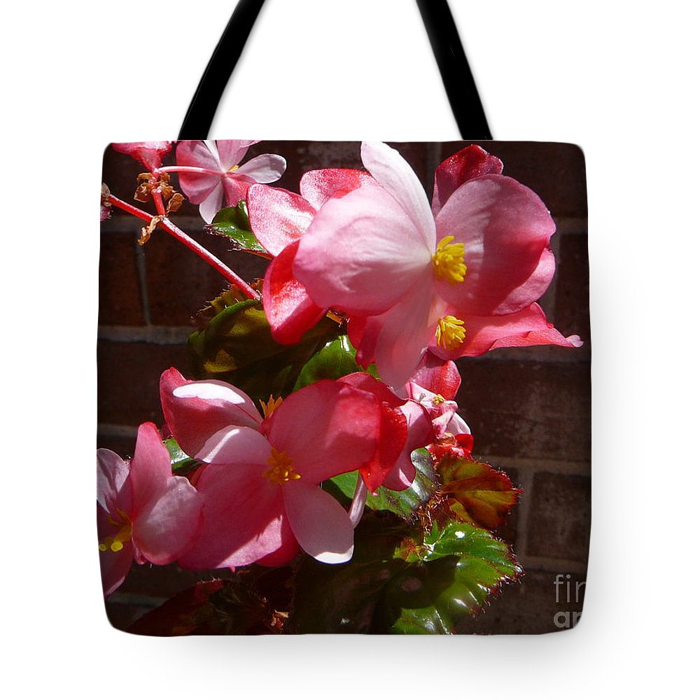Begonia Pinks Tote Bag featuring the photograph Pretty In Pink by Mary Brhel